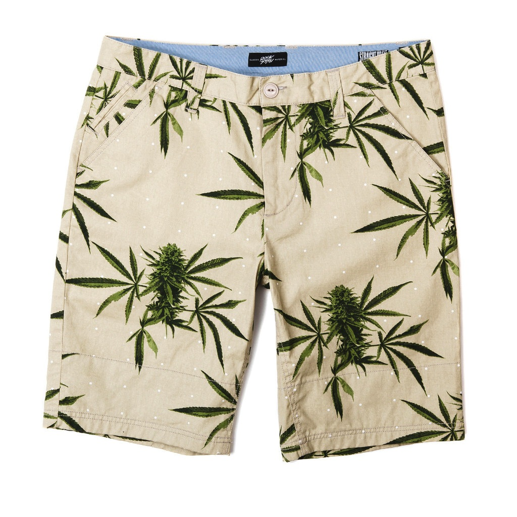 Rocksmith Summer Harvest Shorts