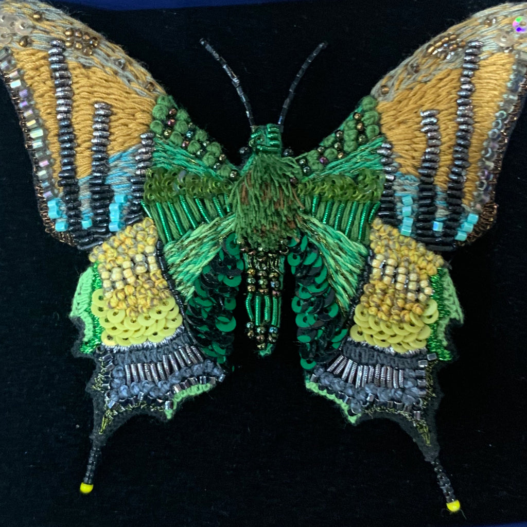 Emperor India Butterfly