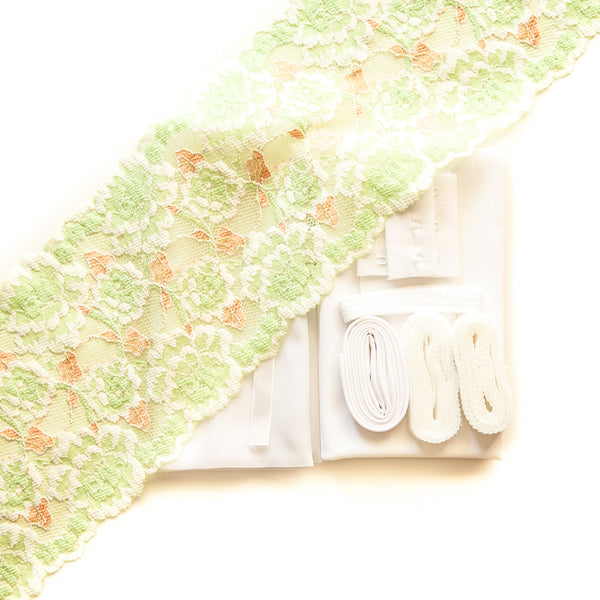 Lace #134 & frost sheer cup lining bra kit