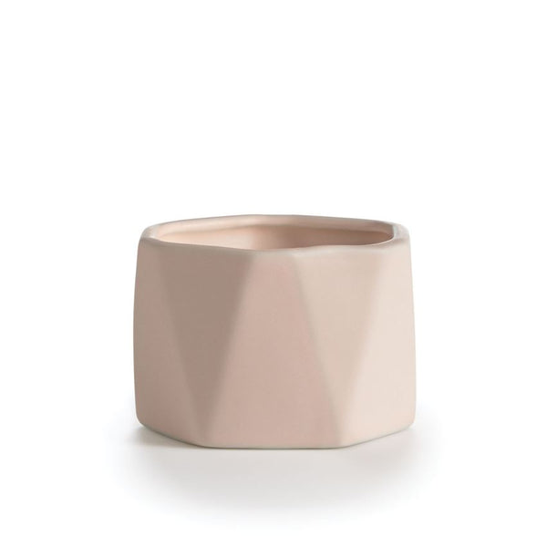 Illume Coconut Milk Mango Dylan Ceramic - All She Wrote