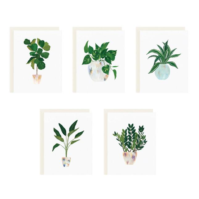 House Plants Series Boxed Stationery - All She Wrote