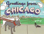 Chicago Dogs Postcard
