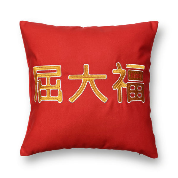WTF Cushion Cover 45x45cm