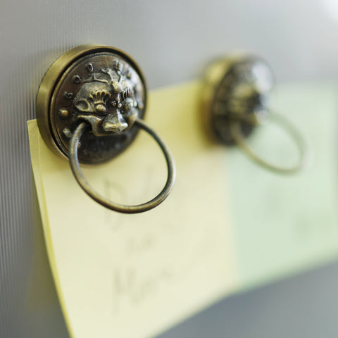 'Guardian Lion' magnets