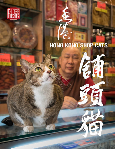 Hong Kong Shop Cats
