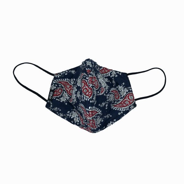 WHY-Y Mask, Red Paisley on Navy