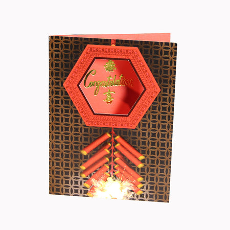 'Lucky Cat' A4 File Folder
