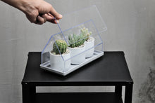 Load image into Gallery viewer, Qualy Micro Greenhouse, Plant Tray & Green house