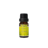 Citronella 10ml Fragrance Oil by Carroll&Chan