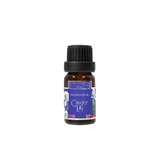 Ginger Lily 10ml Fragrance Oil by Carroll&Chan