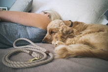 Load image into Gallery viewer, Sand Brown + Brass Rope Dog Leash