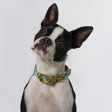 Load image into Gallery viewer, Coastal Flower + Brass Cafe Collar