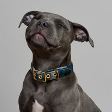 Load image into Gallery viewer, Blue Green Twill + Brass Cafe Collar