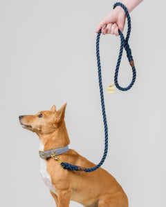 Royal Navy + Brass Rope Dog Leash