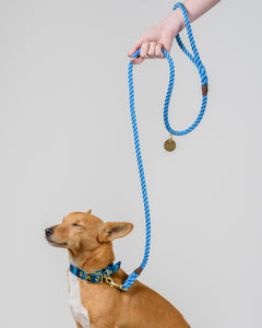 Sky Blue + Brass Rope Dog Leash