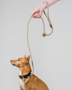 Sand Brown + Brass Rope Dog Leash