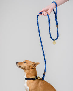 Admiral Blue + Brass Rope Dog Leash