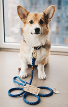 Load image into Gallery viewer, Welsh corgi with admiral blue rope dog leash with brass hardware by a window