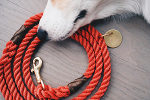 Red + Brass Rope Dog Leash