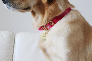 Pink Guatemalan Ikat + Brass Cafe Collar