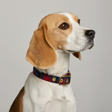 Load image into Gallery viewer, Red Tartan + Brass Cafe Collar