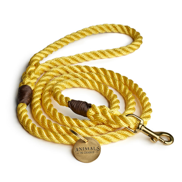 Butter Yellow + Brass Rope Dog Leash