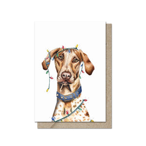 Ludo in Lights Greeting Card