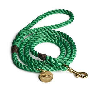 Leafy Green + Brass Rope Dog Leash
