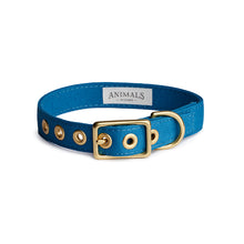 Load image into Gallery viewer, Ocean Blue + Brass All Weather Collar