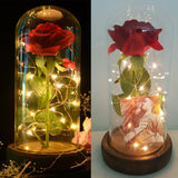Beauty and the Beast Rose Jar with Lights