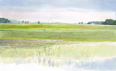 "Barb Hahn: ""Wet Fields"" Fine Art Print"