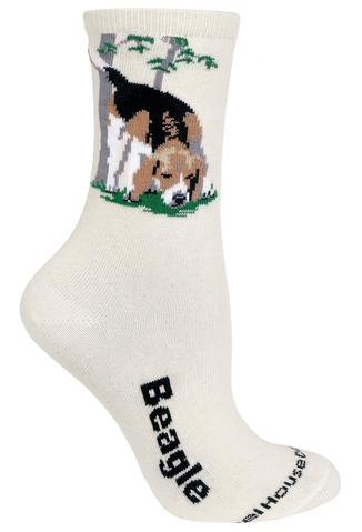 Wheelhouse Beagle Socks