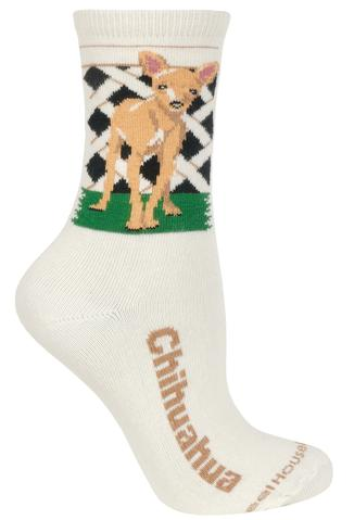 Wheelhouse Chihuahua Socks
