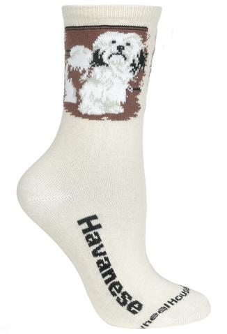 Wheelhouse Havanese Socks
