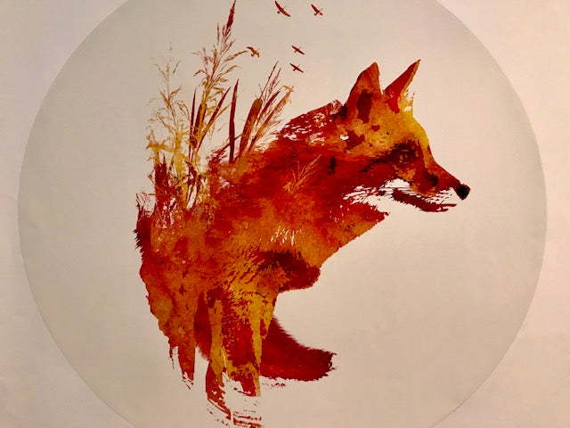 Robert Farkas: Peel-able Wall Decoration: Plattensee Fox
