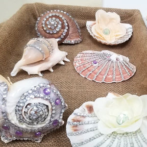 Shell Decoration kit for Kids