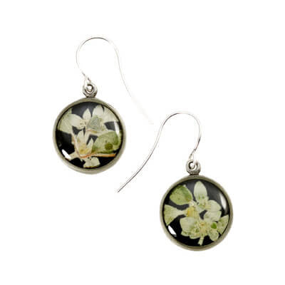 Shari Dixon Silver Leaf Flower Earrings