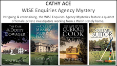 WISE ENQUIRIES AGENCY MYSTERIES by CATHY ACE (E-book)