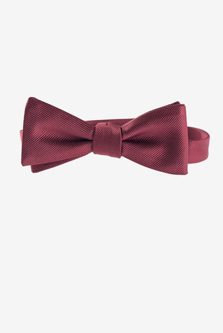 Eleventh Doctor's Bow Tie - AbbyShot - 1