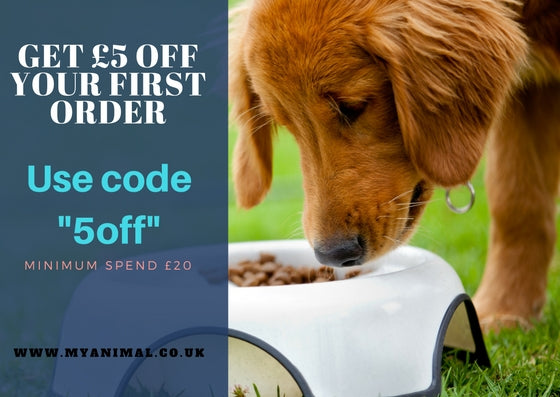 Grain Free Dog Food now suitable for Small Breed Dogs