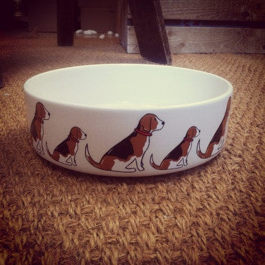 Beagle Dog Bowl - My Animal