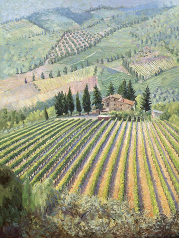 Tuscan Vineyard II
