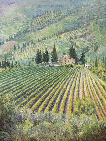 Tuscan Vineyard I