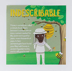 Indescribable Lunchbox Cards - Louie Giglio
