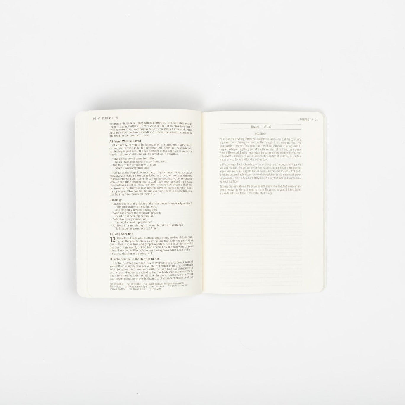 The Jesus Bible Journals - New Testament / Pre-Order 25% Off