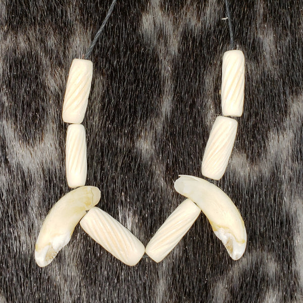 Boar Tooth Necklace, Métis Crafted