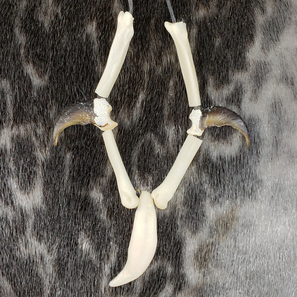 Black Bear Tooth with 2 Claws Necklace , Métis Crafted