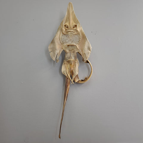 Sea Monster, Jenny Haniver (B Grade)
