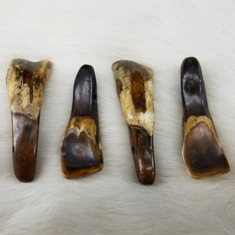 Bison Teeth (Brown), Drilled Sets of 4