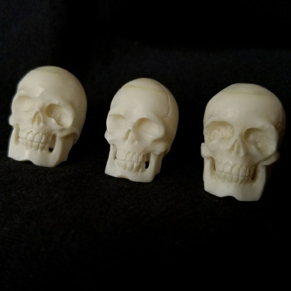 Human Skulls, Cattle Bone Carvings